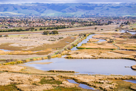 Marsh views, Coyote Hills Regional Park, east San Francisco bay, California