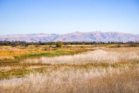 Marsh Landscape, Coyote Hills Regional Park, East San Francisco Bay Area, California Reklamní fotografie