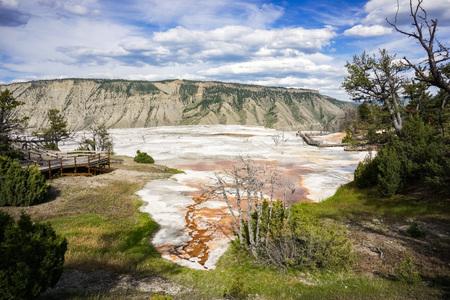 Travertine Terrace advance, Mammoth Hot Springs, Yellowstone Stok Fotoğraf