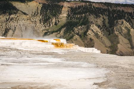 Active Hot Spring, Mammoth Hot Springs terraces, Yellowstone Stok Fotoğraf