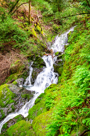 Waterfall on the Cataract trail in Marin Municipal Water District, Marin county, north San Francisco bay area, California Stock Photo
