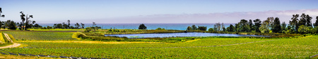 Organic strawberry field on the Pacific Ocean coast, near Santa Cruz, California