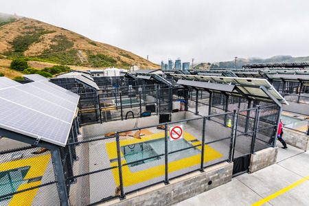 July 4, 2019 Sausalito / CA / USA - The Marine Mammal Center located in Marin Headlands in North San Francisco bay; the center is rescuing, rehabilitating and releasing marine mammals in distress