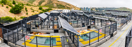 July 4, 2019 Sausalito  CA  USA - The Marine Mammal Center located in Marin Headlands in North San Francisco bay; the center is rescuing, rehabilitating and releasing marine mammals in distress