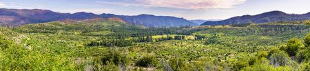 Panoramic view of beautiful green meadows and forests in Yosemite National Park, Sierra Nevada mountains, California