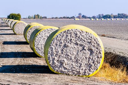 Cotton bales arranged in a row next to a harvested field, ready for pick up; Central California, United States Reklamní fotografie