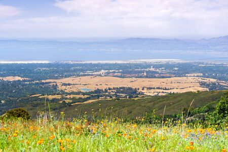 Aerial view of Palo Alto, Stanford University, Redwood City and Menlo Park, part of Silicon Valley; wildflower field visible in the foreground; San Francisco Bay Area, California