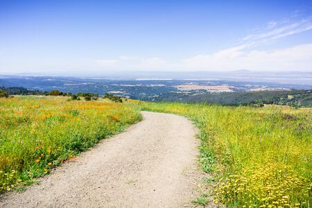 Hiking trail in Santa Cruz mountains lined up with tall grass and blooming wildflowers; the San Francisco Bay Shoreline and Silicon Valley visible in the valley; California