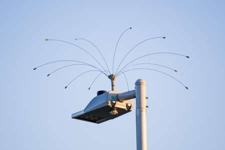 Humane bird deterrent device installed on top of a street lamp; San Francisco Bay Area, California 免版税图像 - 151174081