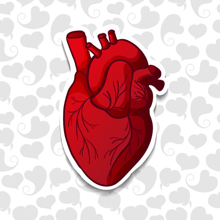 biological science: Drawing the human heart on background pattern of cartoon hearts. Vector illustration Illustration