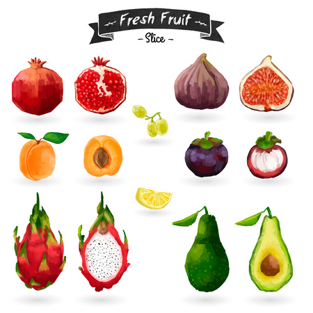 Set of fruits in watercolor style. Vector