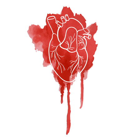 Silhouette of the human heart on a red spot watercolor. vector. Illustration