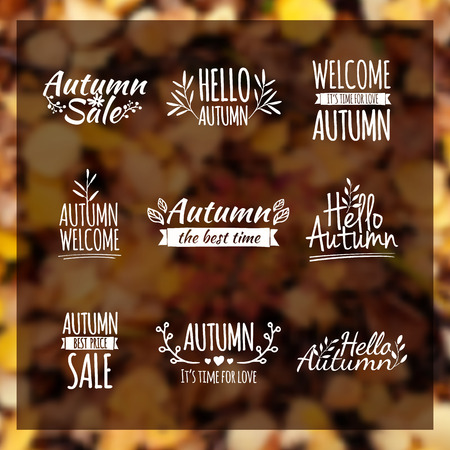 Logotypes set. Autumn badges, labels, ribbons, elements, wreaths and laurels, branches. Hand drawing. Vintage vector on blurred background leaf litter Stock Illustratie