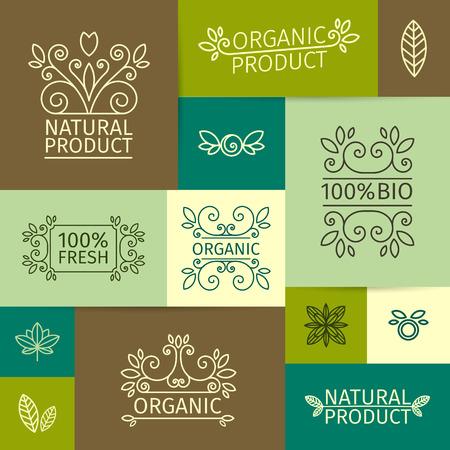 productos naturales: Conjunto de la marca de la vendimia, señales, carteles en un estilo lineal con remolinos, hojas, ramas y bayas. Para los productos naturales, orgánicos, bio. Vector