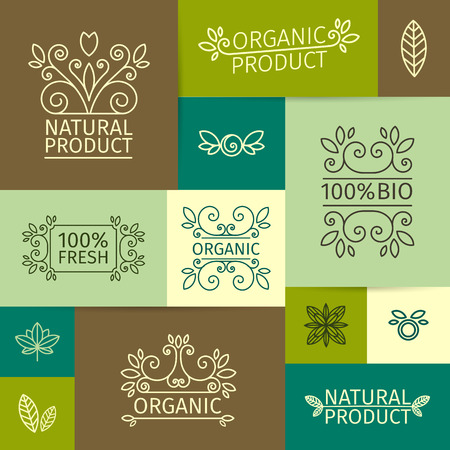 gardening: Set of vintage logos, signs, posters in a linear style with swirls, leaves, branches and berries. For natural, organic, bio products. Vector