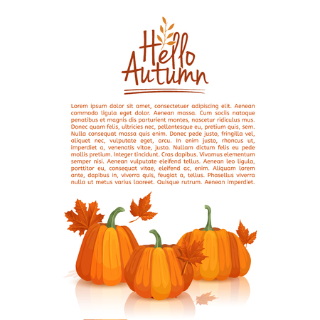 design template Hello autumn. poster design with the decor of pumpkins and autumn leaves.  icon, symbol hello autumn. Space for your text.