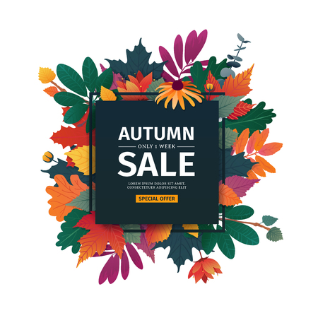 Square design banner with autumn sale logo. Discount card for fall season with white frame and herb. Promotion offer with autumnal oak plant, maple leave and flowers decoration. Vector . Çizim