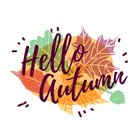Design autumnal poster, banner and label with Hello Autumn text on modern color silhouette maple leaf and season herb. Vector.
