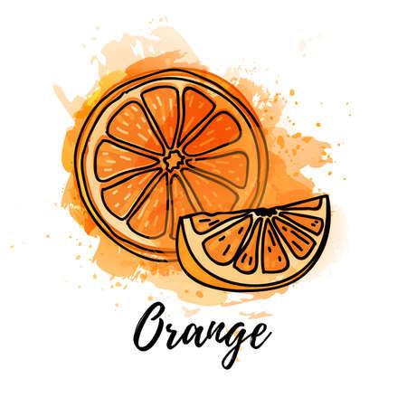 illustration of slice orange fruit. Vector watercolor splash background. Graphics for cocktails, fresh juice design. Natural organic citrus food label.