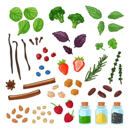 Big set of spice, berries, herb and roots. Natural raw fresh food for vegetarian nutrition. Illustration for fresh smoothie with nuts and jars of spices. Vector.