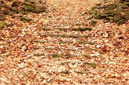 granite park: Old park granite stairs with fall leaves