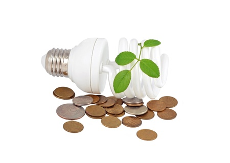 Energy saving light bulb, money and plant on white