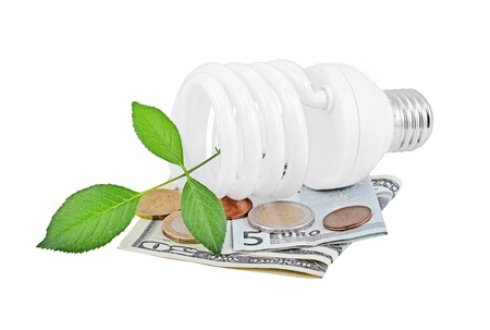 Energy saving light bulb and money and plant on white photo