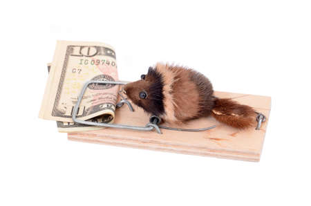 baited: Mouse and money in tap, isolated on white background Stock Photo