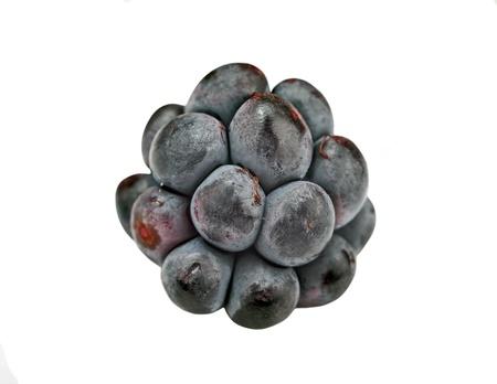 rubus: Blackberry (rubus), close-up, isolated on white background