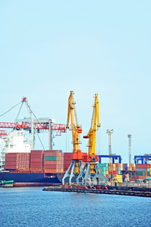 Container stack and ship under crane bridge photo