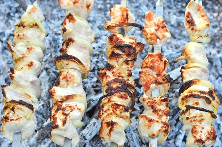chargrill: Shish kebab on skewers and hot coals, DOF