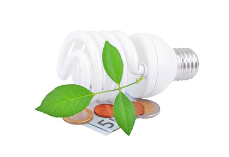 energy save: Energy saving light bulb and money and plant on white