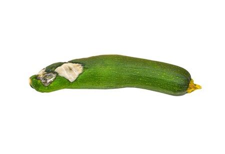 spoilage: Molded vegetable marrow (zucchini), isolated on white background Stock Photo