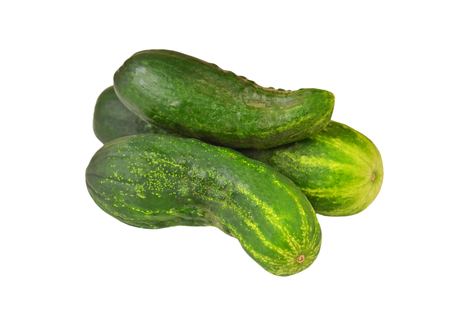 gherkin: Fresh green cucumber gherkin, isolated on a white background Stock Photo
