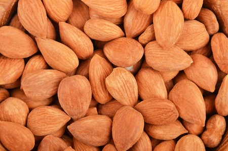 Dried apricot kernel, close up as background Stock Photo