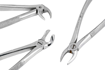 gripper: Dental pliers tool, isolated on white background