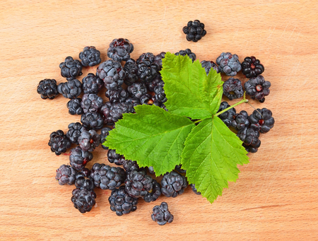 rubus: Blackberry (rubus) with green leaf on wooden background