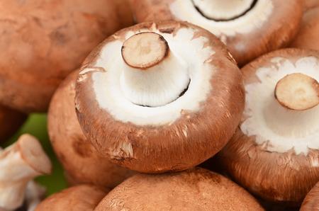 true: Fresh, raw and whole champignon (True mushroom)