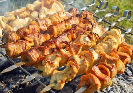 flesh eating animal: shish kebab on skewers and hot coals Stock Photo