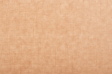 recover: Cardboard textured background from processing trash paper Stock Photo