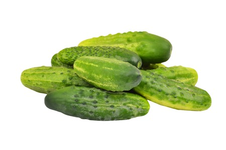 gherkin: Green cucumber gherkin, isolated on white background