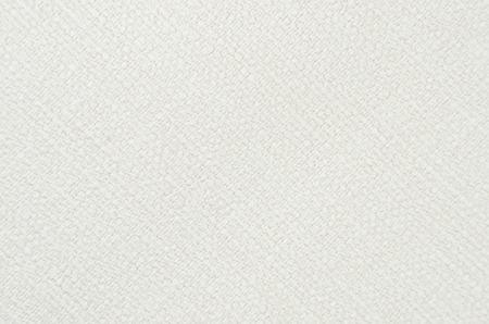 Gaufré fond de papier, de couleur blanche, fermer Banque d'images - 66276853