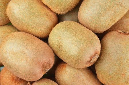actinidia deliciosa: Green kiwi fruit (Actinidia deliciosa), close up shot Stock Photo