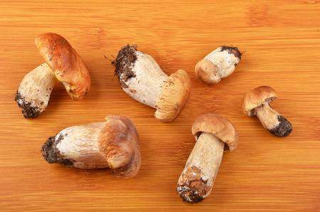 cep: Boletus edulis mushroom on wooden board background Stock Photo