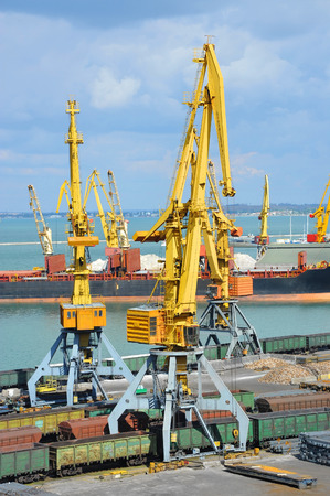 Bulk cargo ship and train under port crane bridge