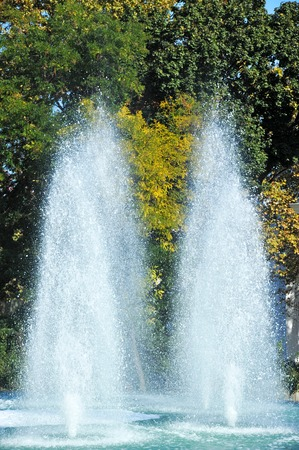 Beautiful fountain in park on green tree background Stock Photo