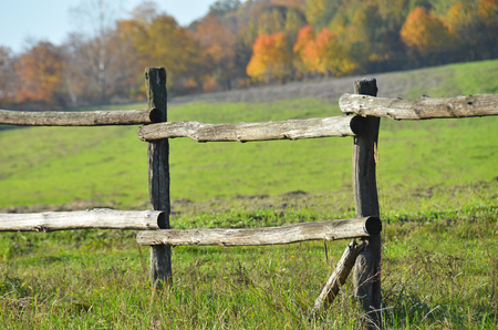 fense: Old wooden rural corral fense in meadow