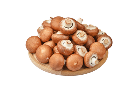 Champignon (True mushroom), isolated on white background