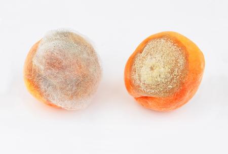 2 つは白い背景に熟した桃を成形 写真素材