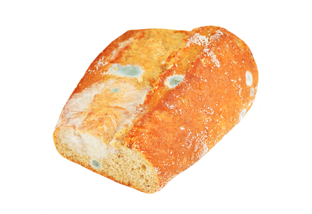 Molded loaf of bread, isolated on white background